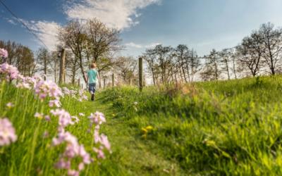 Meer natuur voor hetzelfde geld in Friesland dankzij het uitdaagrecht